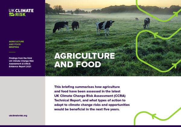 Agriculture and Food Sector Briefing