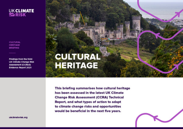 Cultural Heritage Sector Briefing
