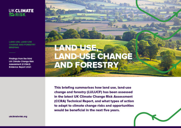Land Use, Land-Use Change and Forestry Briefing