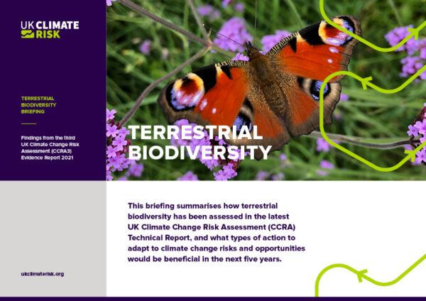 Terrestrial Biodiversity Briefing